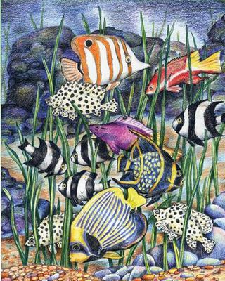 Royal /& Langnickel Colour Pencil by Numbers Sea Animals Designed Painting Set