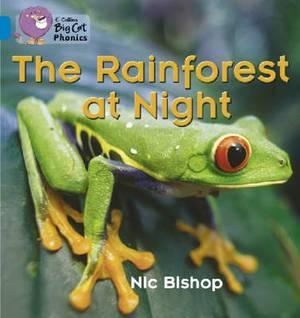 The Rainforest at Night: Band 04/Blue (Collins Big Cat Phonics)