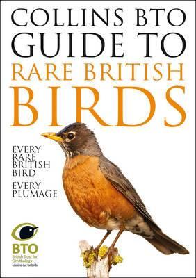 Bto Guide to the Rare British Birds