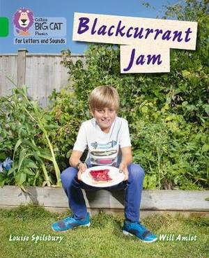 Collins Big Cat Phonics for Letters and Sounds - Blackcurrant Jam: Band 5/Green