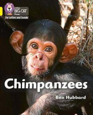 Collins Big Cat Phonics for Letters and Sounds - Chimpanzees: Band 3/Yellow