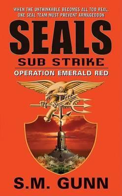 Seals Sub Strike Operation Eme