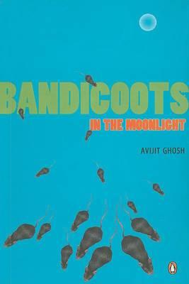 Bandicoots in the Moonlight