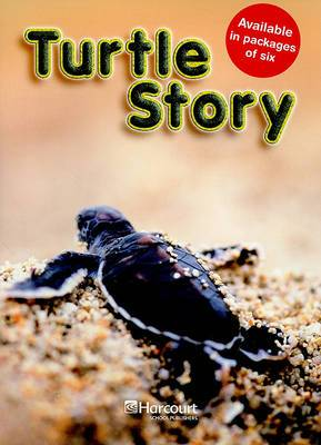 Turtle Story, Above Level Grade 3