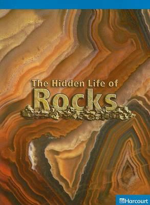 The Hidden Life of Rocks