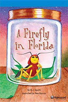 Storytown: On Level Reader Teacher's Guide Grade 4 a Firefly in Florida