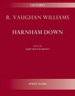 Harnham Down
