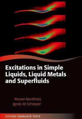 Excitations in Simple Liquids, Liquid Metals and Superfluids