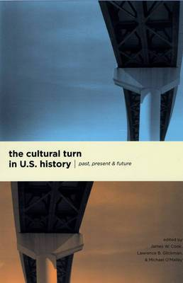 The Cultural Turn in U.S. History: Past, Present, and Future