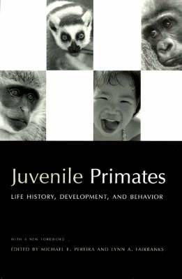 Juvenile Primates: Life History, Development and Behavior