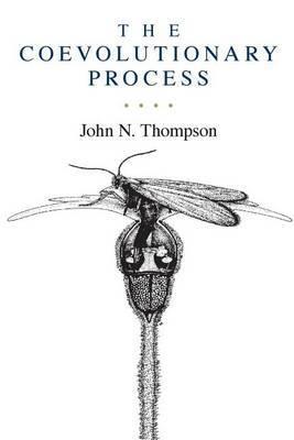 The Coevolutionary Process