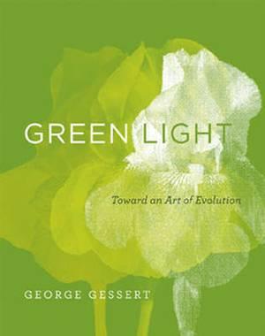 Green Light: Toward an Art of Evolution