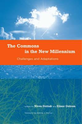 The Commons in the New Millennium: Challenges and Adaptation