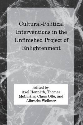 Cultural-Political Interventions in the Unfinished Project of Enlightenment