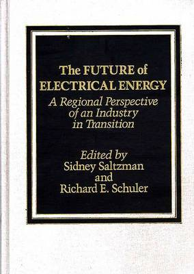 The Future of Electrical Energy: A Regional Perspective of an Industry in Transition