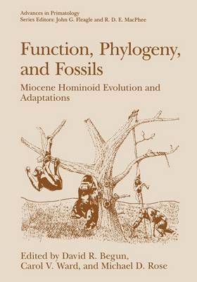 Function, Phylogeny, and Fossils: Miocene Hominoid Evolution and Adaptations