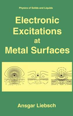 Electronic Excitations at Metal Surfaces