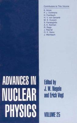 Advances in Nuclear Physics: Volume 25