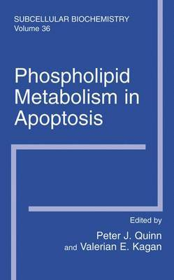 Phospholipid Metabolism in Apoptosis