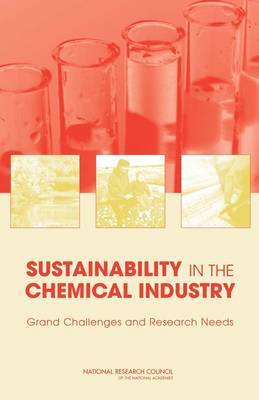Sustainability in the Chemical Industry: Grand Challenges and Research Needs