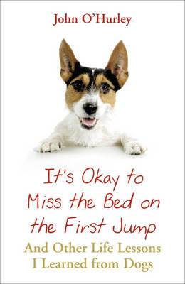 It's OK to Miss the Bed on the First Jump: And Other Life Lessons I Learned from Dogs