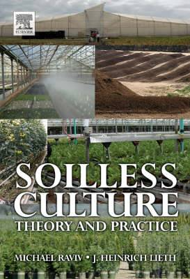 Soillness Culture: Theory and Practice