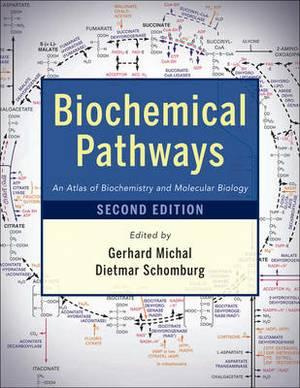 Biochemical Pathways: An Atlas of Biochemistry and Molecular Biology