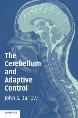 The Cerebellum and Adaptive Control