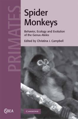 Spider Monkeys: Behavior, Ecology and Evolution of the Genus Ateles