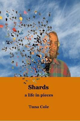 Shards a Life in Pieces