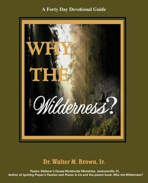 Why the Wilderness: A Forty Day Devotional Guide