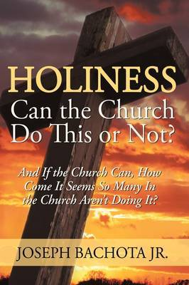 Holiness: Can the Church Do This or Not?: And If the Church Can, How Come It Seems So Many in the Church Aren't Doing It?