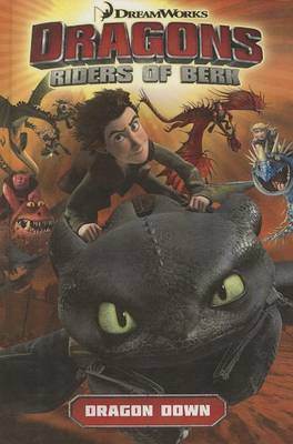 Dragons: Riders of Berk, Volume 1: Dragon Down