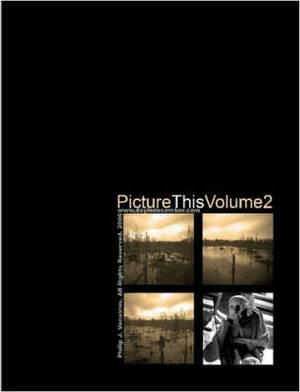 Picture This Volume 2