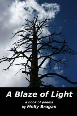 A Blaze of Light