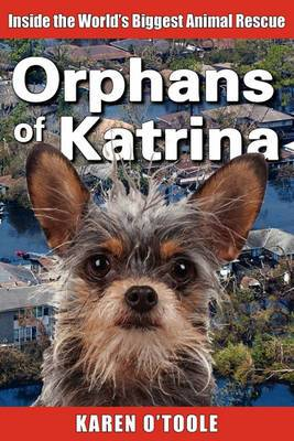 Orphans of Katrina: Inside the World's Biggest Animal Rescue