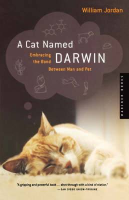 A Cat Named Darwin: Embracing the Bond between Man and Pet