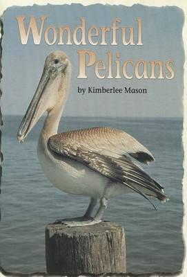 Wonderful Pelicans
