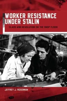 Worker Resistance Under Stalin: Class and Revolution on the Shop Floor