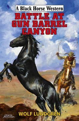 Battle at Gun Barrel Canyon