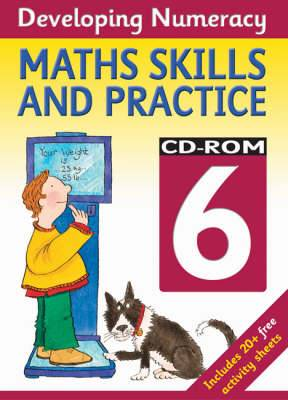 Developing Numeracy: Maths Skills and Practice - Year 6: CD-ROM 6