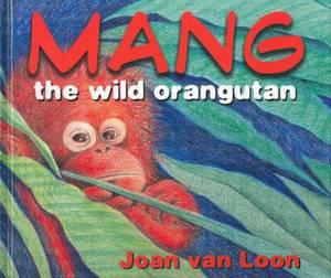 Mang, the Wild Orangutan