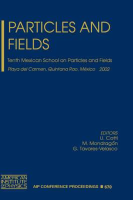 Particles and Fields: Tenth Mexican School on Particles and Field, Playa Del Carmen, Quintana Roo, Mexico, 30 October - 6 November 2002