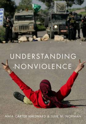 Understanding Nonviolence