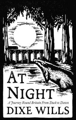 At Night: A Journey Round Britain from Dusk Till Dawn