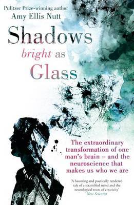 Shadows Bright as Glass: The Extraordinary Transformation of One Man's Brain and the Neuroscience That Makes Us Who We Are