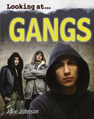 Looking at Gangs