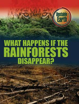 What Happens If the Rainforests Disappear?