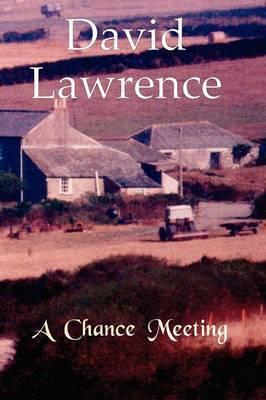 A Chance Meeting: A Novel