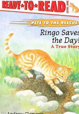 Ringo Saves the Day